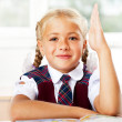 Portrait of a young girl in school at the desk.Horizontal Shot. — Stock Photo #6580742