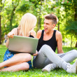 Young happy smiling couple with laptop at picnic - Stock Photo
