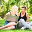 Young happy smiling couple with laptop at picnic — Stock Photo #6582272