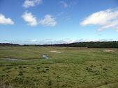 Vue panoramique du paysage sur l'île d'amrum avec phare dans le dos — Photo