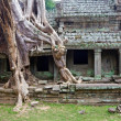 Temple Preah Khan, Cambodia — Stock Photo