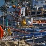 Italy, Sicily, Marina di Ragusa, fishing boats in the port — Stock Photo #6443803