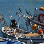 Italy, Sicily, Marina di Ragusa, fishing boats in the port — Stock Photo #6443825