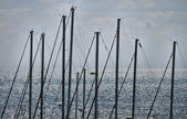 Italy, Siciliy, Mediterranean sea, Marina di Ragusa, sailing boat masts in — Stock Photo