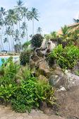Sri lanka resort. — Stok fotoğraf