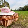 Picnic basket with straw hat — Stock Photo