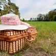 Stock Photo: Picnic basket with straw hat