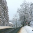 winter in the german harz — Stock Photo