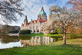 Neus Rathaus Hannover, The New Town City Hall — Stock Photo