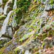 Old stone with lichen — Stock Photo
