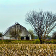Stock Photo: Vintage rustic old barn