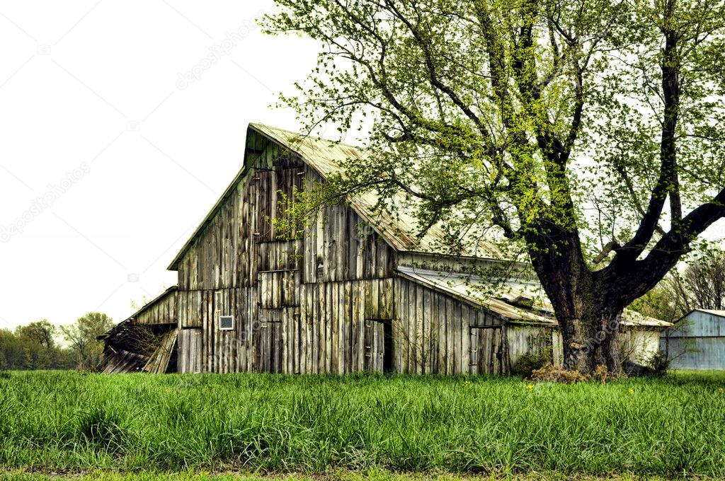 Vintage Rustic Old Barn Stock Photo 5524118