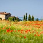 Toscaanse schilderij — Stockfoto