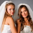 Two pretty brides wearing wedding dresses and veils - Stock Photo