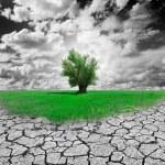 Environment Concept — Stock Photo #6058501
