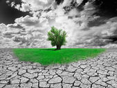 环境概念 — 图库照片