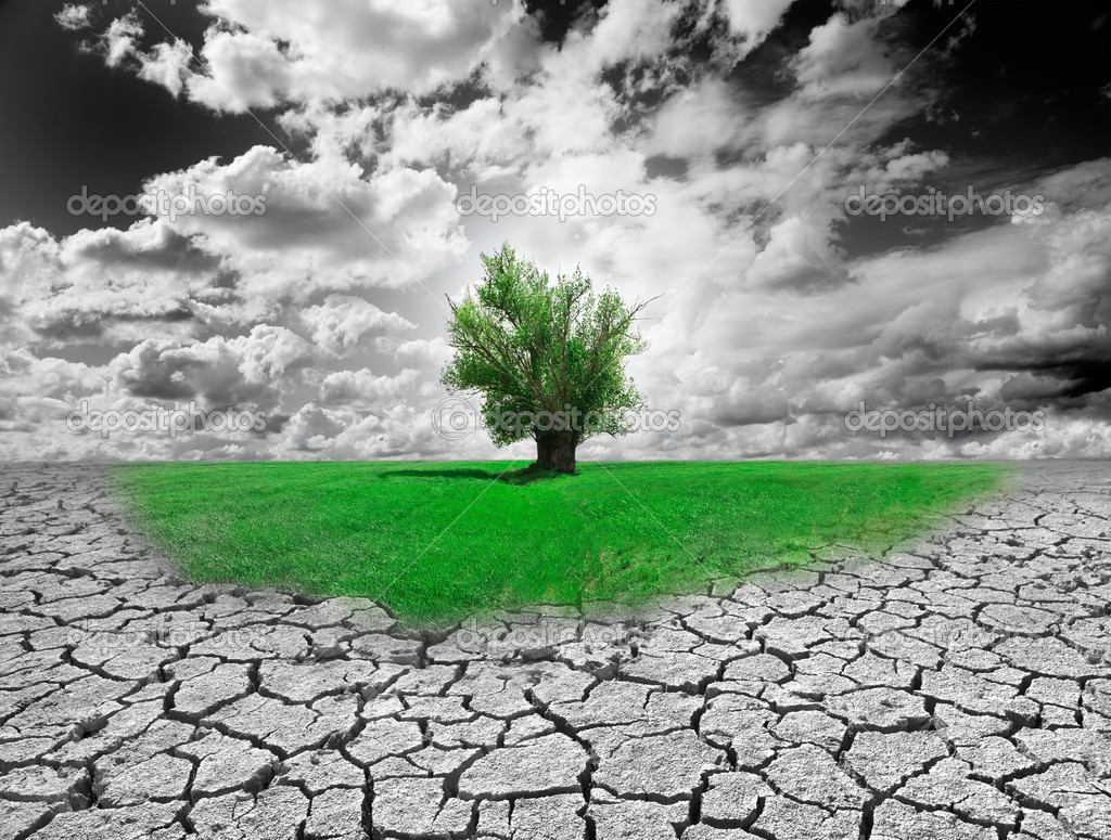 Concept of environment with tree and dry soil — Stock Photo #6058501