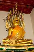 Gouden Boeddha in wat po, bangkok, thailand — Stockfoto