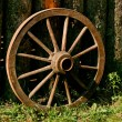 Antique wheel - Stock Photo