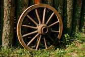 Antique wheel — Stock Photo