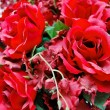 Close up of red roses bunch — Stock Photo