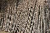 Bamboo materials — Stock Photo