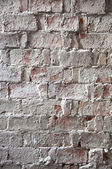 Lime brick wall — Stock Photo