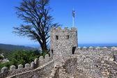 Maurský hrad, sintra — Stock fotografie