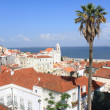 View of Lisbon — Stock Photo #5951007