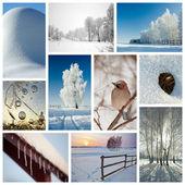 Zimní koláž — Stock fotografie