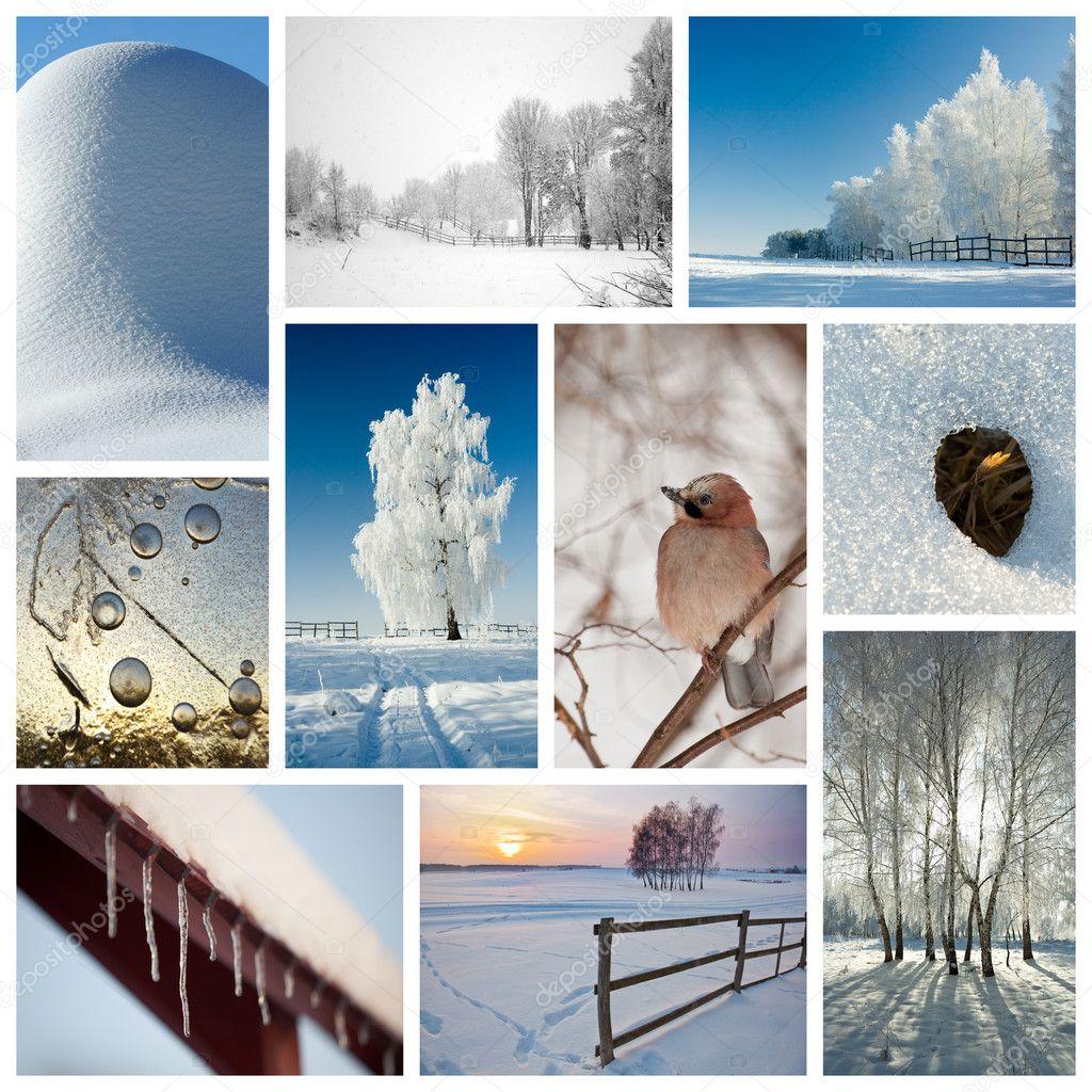 Зимний коллаж - Стоковое фото icefront #5592262