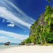 tropical beach — Stock Photo #5912136