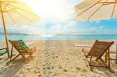 Sunny beach — Stock Photo