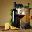 Wine and cheese — Stock Photo