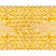 Honeycomb - Foto Stock