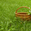 Basket — Foto de stock #6710301