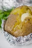 马铃薯 — 图库照片