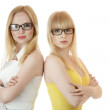 Two busineswomen — Stock Photo #5897600