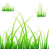 Blades of Grass — Stockvector