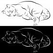 Sleeping Cat Line Drawing — Stock Vector #5730422