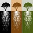 Royalty-Free Stock Vector Image: Vertical Tree Root Banner Set