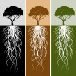 Vertical Tree Root Banner Set - Stock Vector