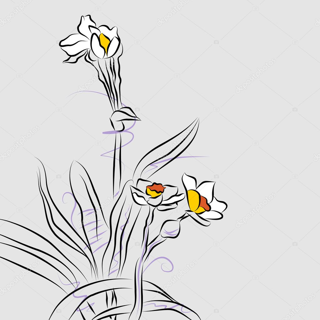 Line Drawings Of Flower Arrangements : Orchid flower arrangement line drawing — stock vector