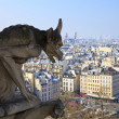 Famous chimera of Notre-Dame overlooking Paris. — Stock Photo #5426408