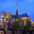 Notre Dame de Paris at night, Paris, France — Stock Photo
