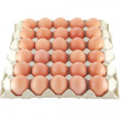 Thirty eggs — Stock Photo