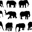 Elephants — Stock Vector #5849001