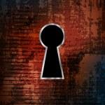 Keyhole — Stock Vector #6372897