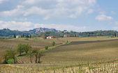 Italian town in Tuscany — Stock Photo