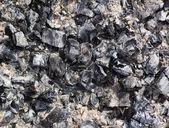 木炭和灰烬 — 图库照片